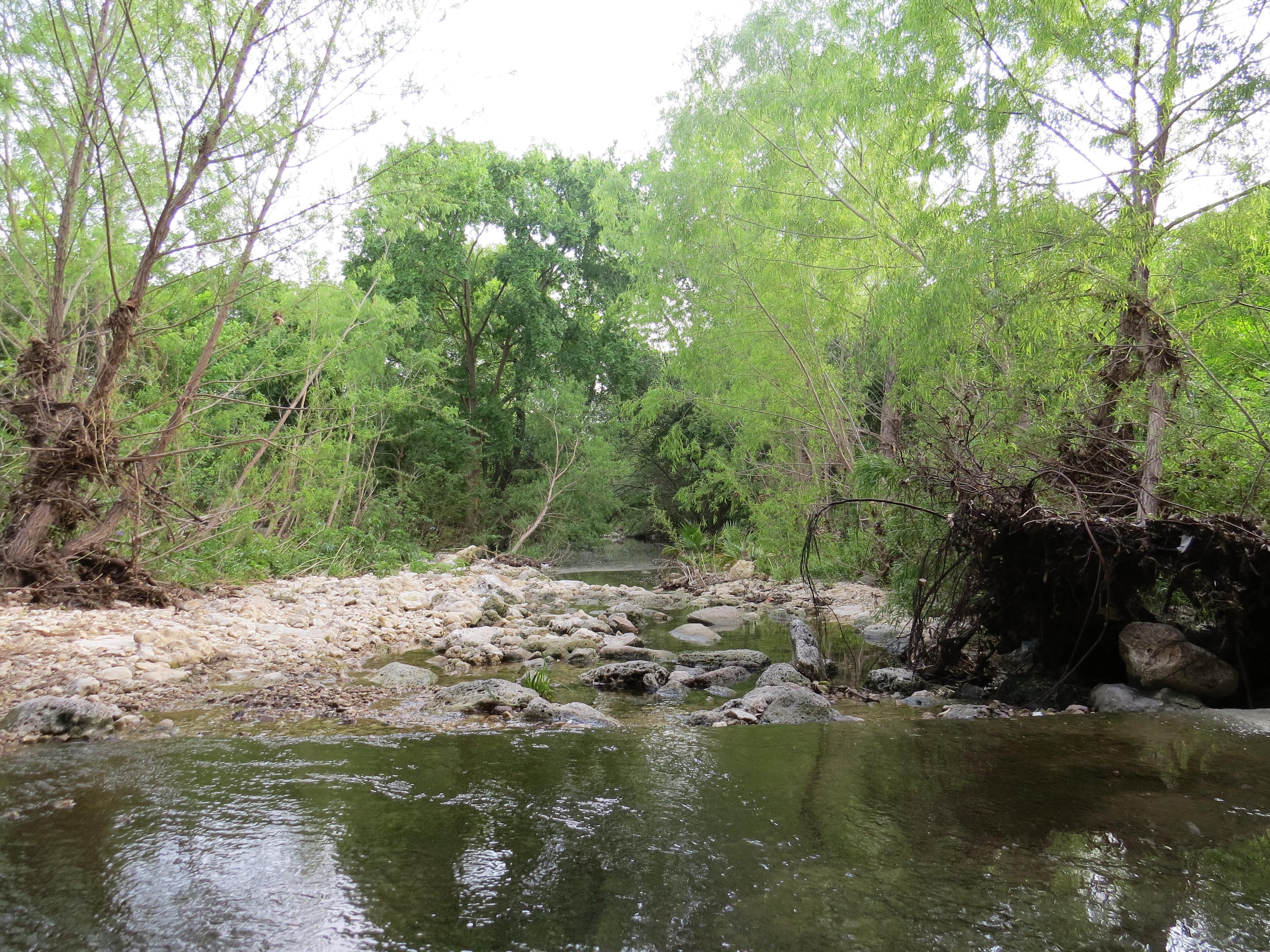 Creek One