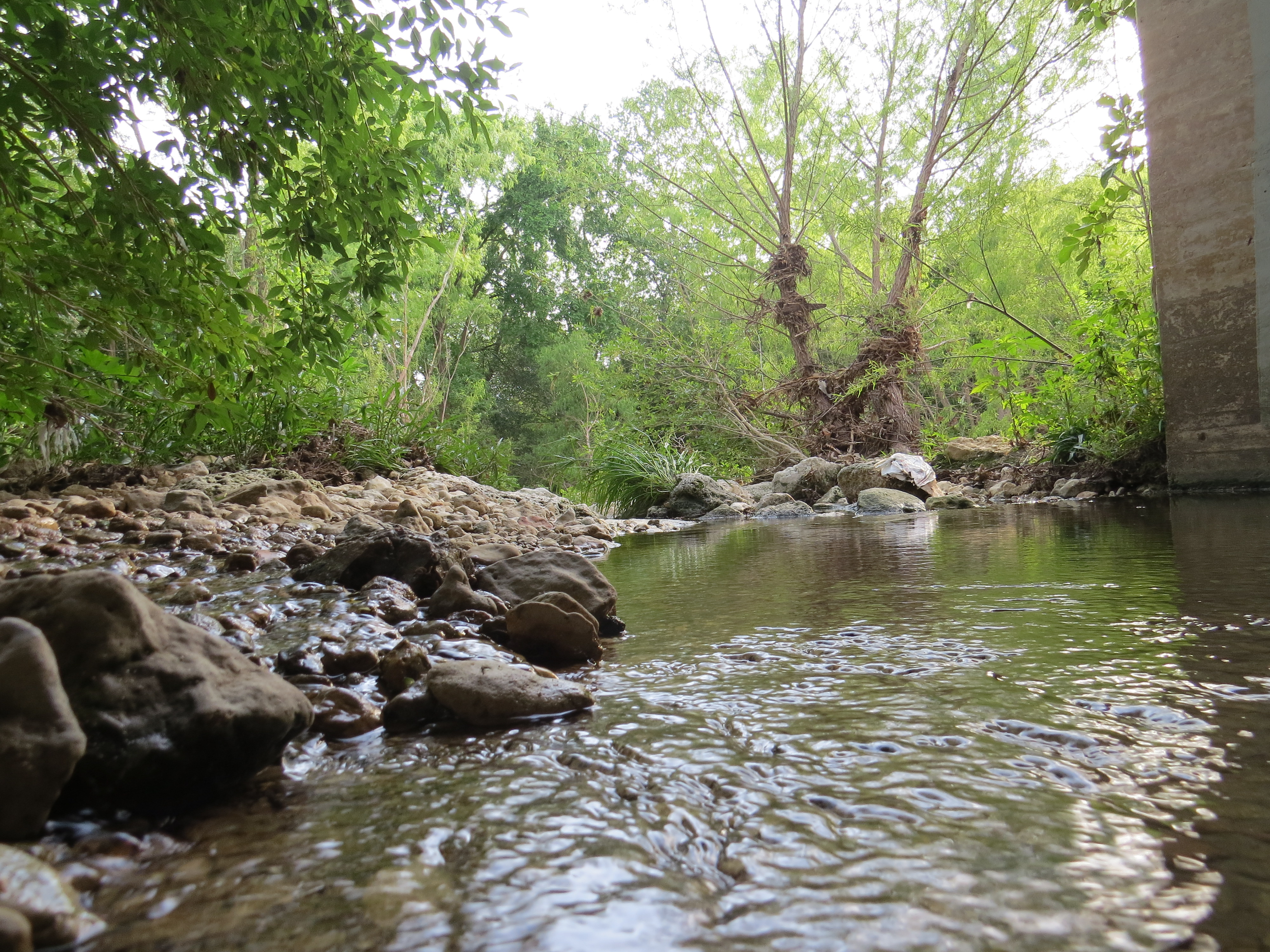 Creek Two